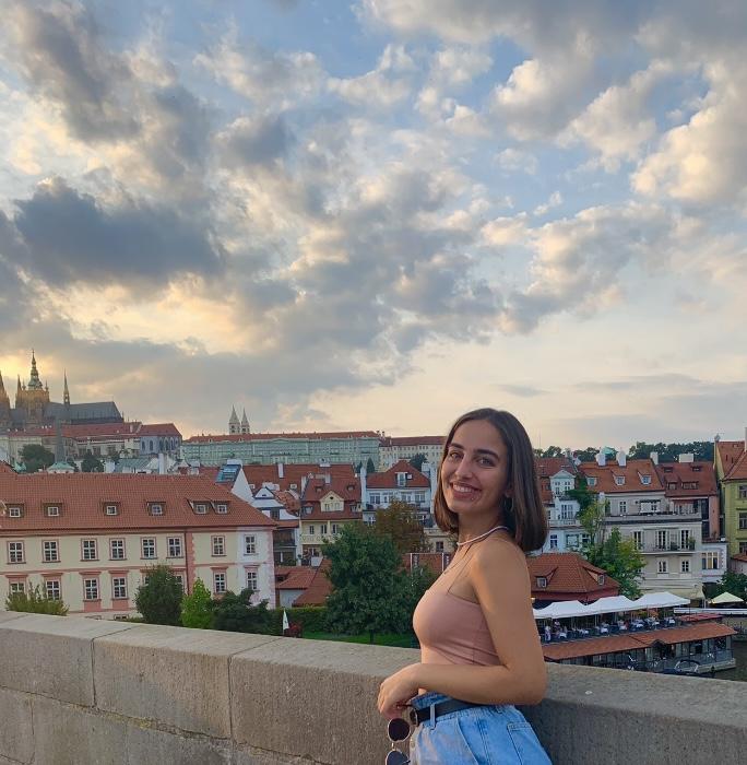 Zilan Topalan's summer internship